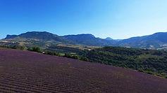 unesco-geoparc-haute-provence.jpg