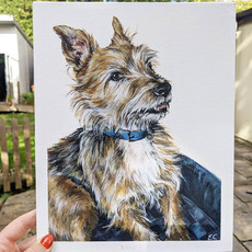 Pet portrait example