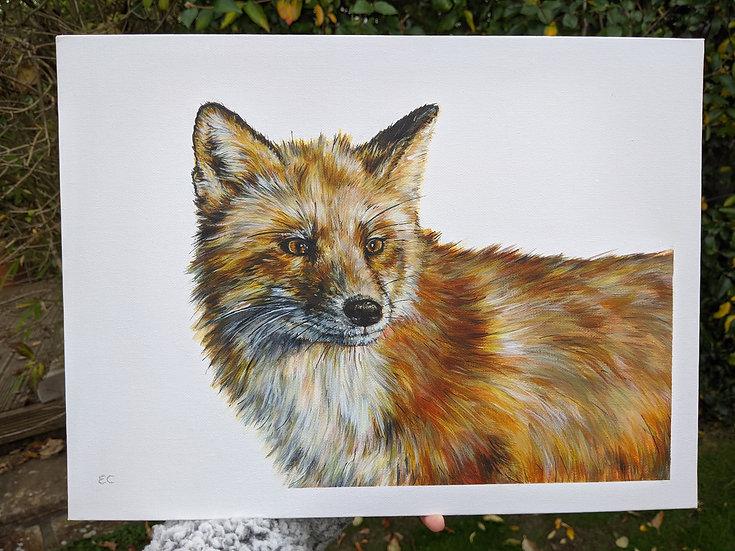 'Felix' Fox Print