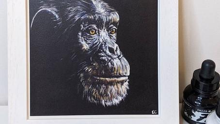 Chimpanzee Prints