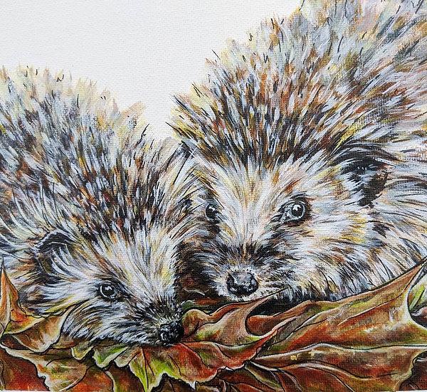 'Herbie & Holly' Hedgehog Print