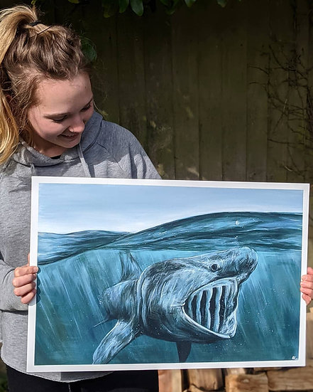 Original Basking Shark