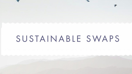 Introduction to Sustainable Swaps
