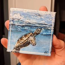 Mini turtle canvas