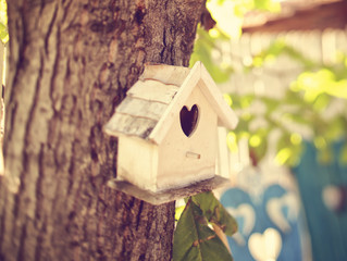 Come una casa può legare per sempre due anime- L'equazione dell'amore di Dirac e una casa co