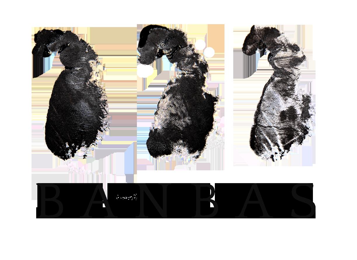 Banbas Logo
