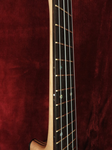 Polished Frets and Side Fret Markers.JPG