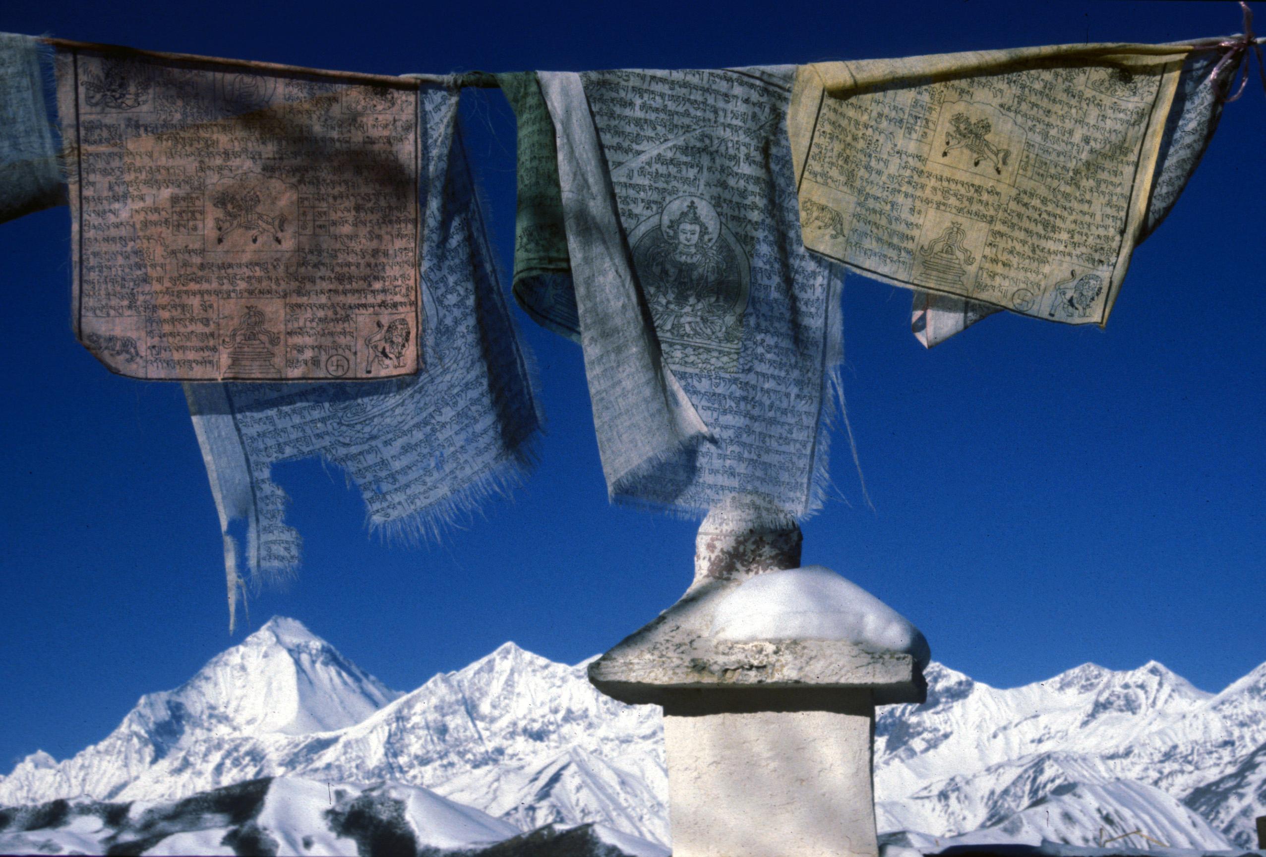 Himalaya-4a