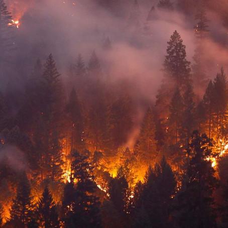 「地球温暖化防止」:私たちにできる日常の重要な取り組み