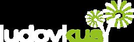 logo_Feuerwerk_4C_aufschwarz.png