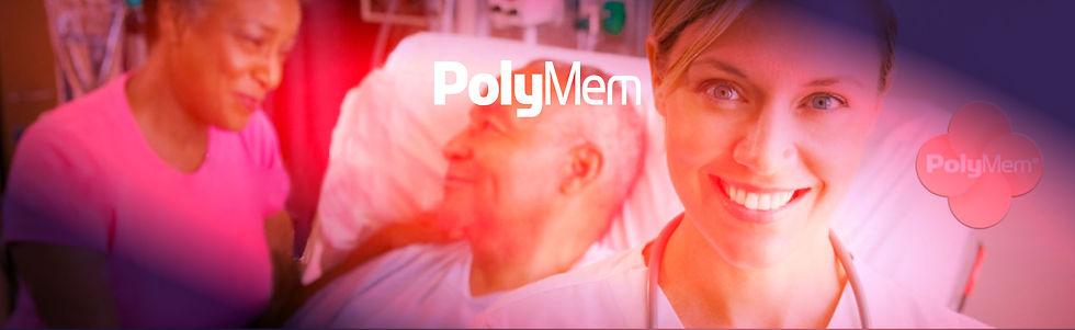 polyfinal.jpg