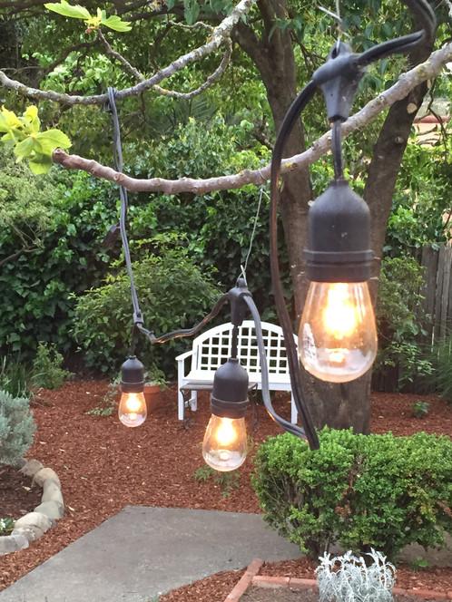 Vintage Patio String Lights W/ Clear Glass Edison Bulbs 24u0027u0027 Spacing