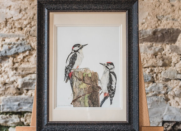 """Great spotted woodpecker study"" Original"
