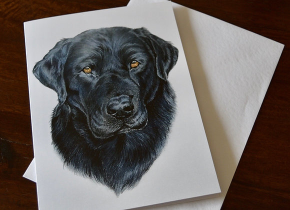 """Black lab"" greeting card"