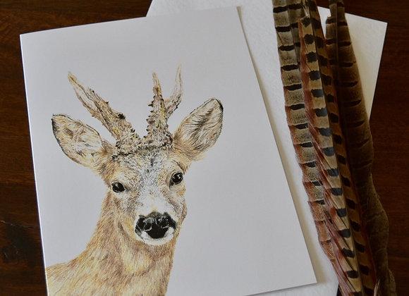 """Roe buck "" greeting card"