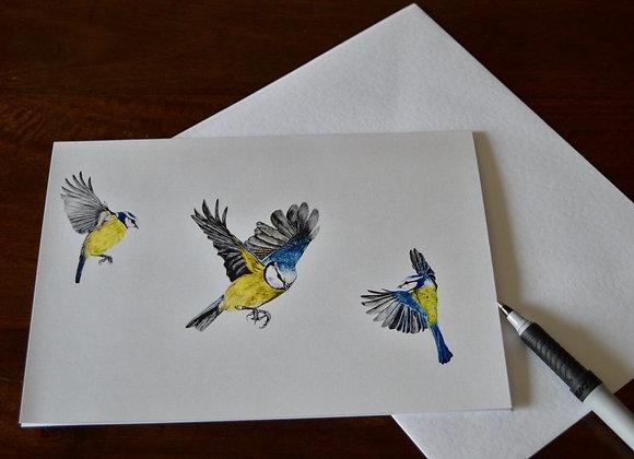"""blue tit"" greeting card"