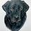 "Thumbnail: ""Black lab"" greeting card"