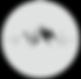 Main logo invert.png