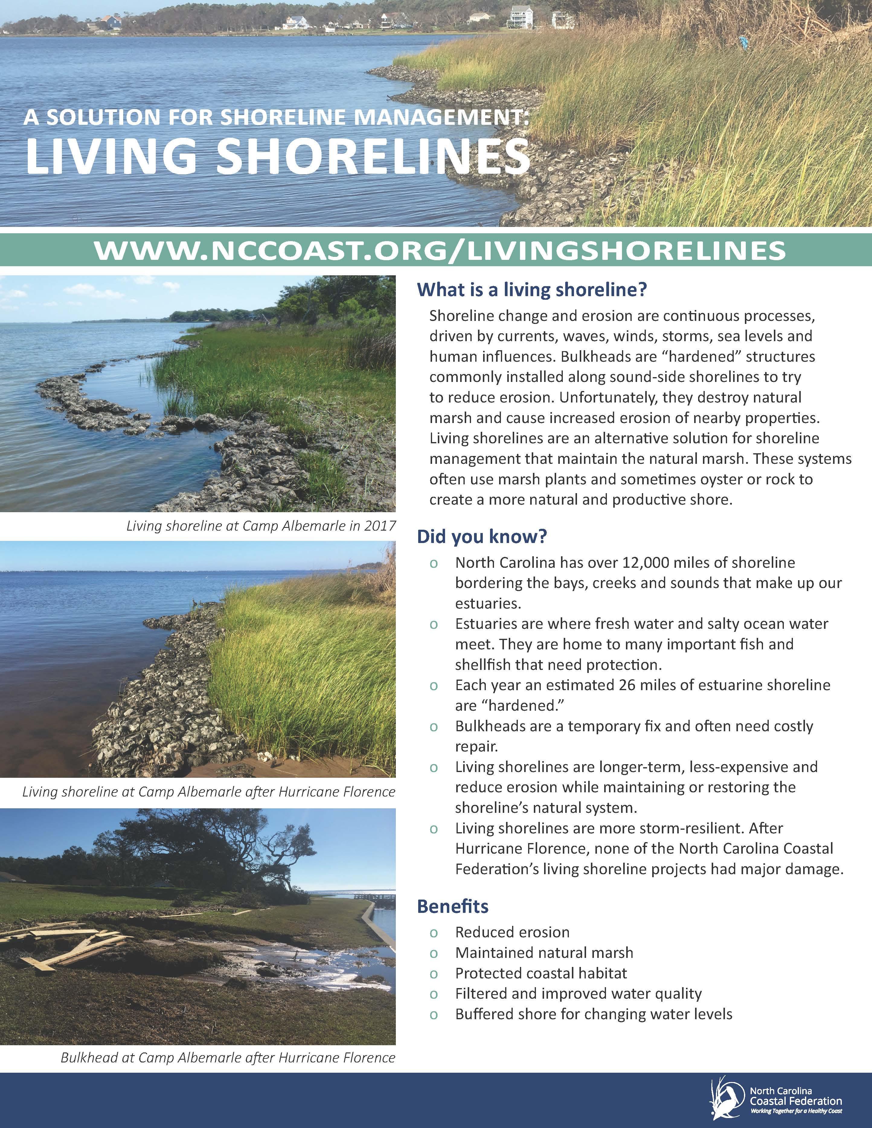 Living Shoreline Handout