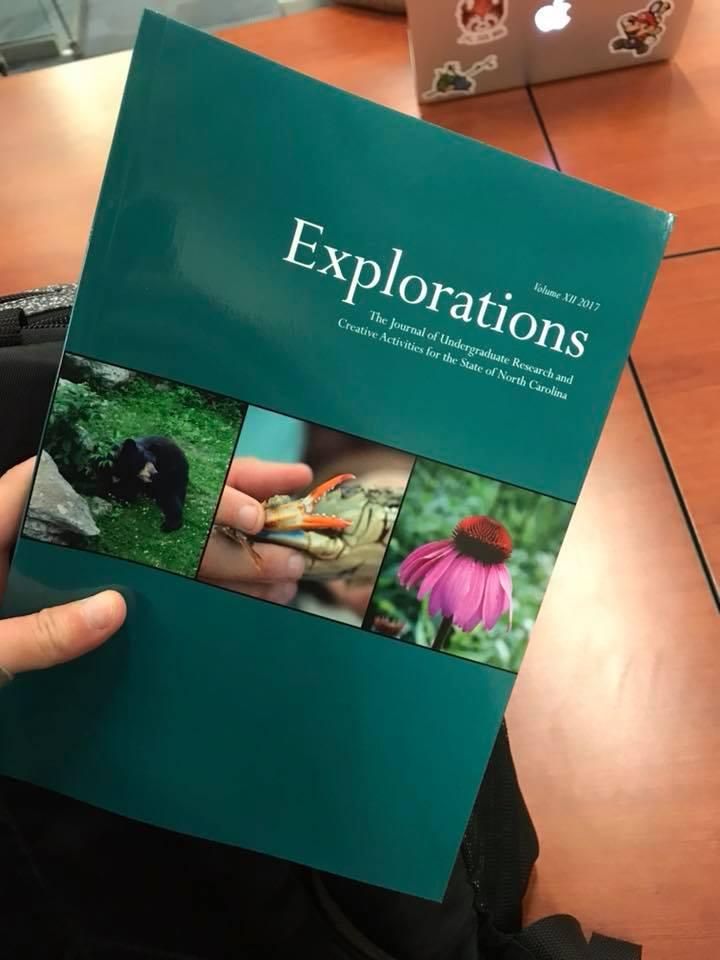 Explorations XII