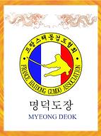 drapeau myeong deok dojang haidong gumdo sabre coreen paris ile de france