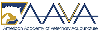 AAVA logo.png