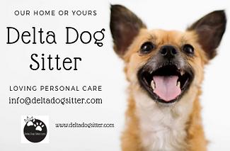 Delta Dog Care (1).png