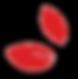 bigsmall leaf_transparant.png