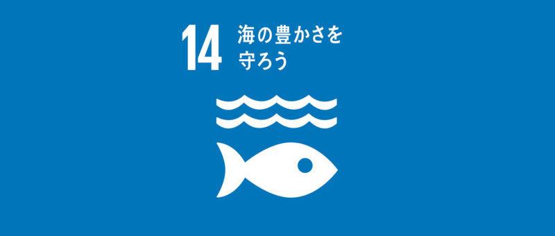 SDGs-14-s-800x592.jpg
