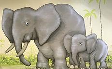 jangala elephant