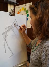 Tatiana-Working-on-Skeleton.jpg