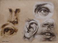 Lindsay Droege Oil Painting Vanderpoel S