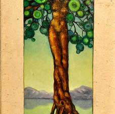Female Tree Trunk