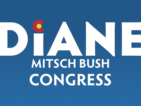 Diane Mitsch Bush Phonebanks and Virtual Roundtable