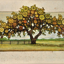 Live Oak on Route 4, Texas