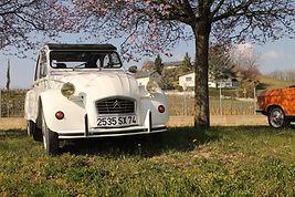 Citroën-2CV-Blanche-vente-savoie