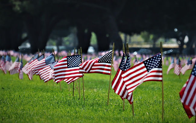American flags in a lawn