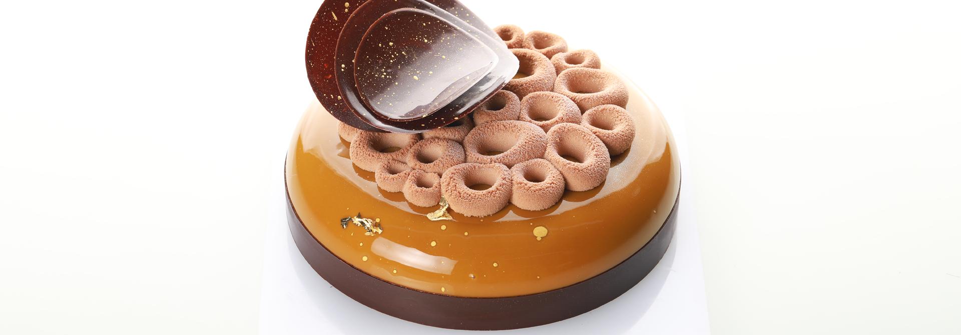 Praline and Chocolate entremet