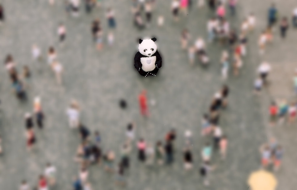 A panda stands in the middle of a crowd of onlookers