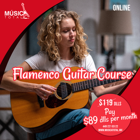 flamenco guitar course.png