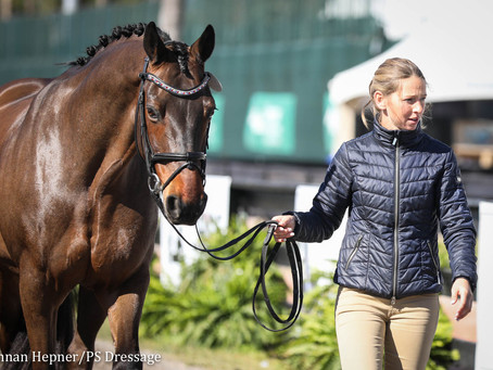 From Stable Hand to Grand Prix Dressage Entrepreneur