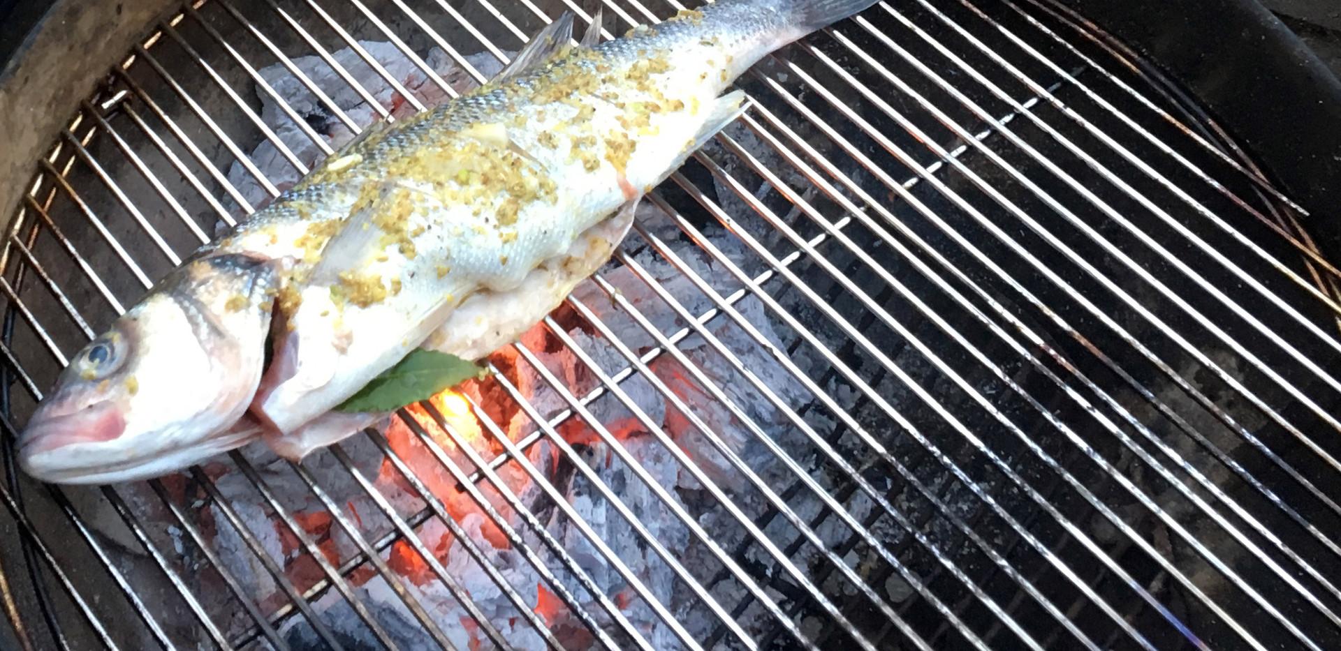 PrinceAlbertfish