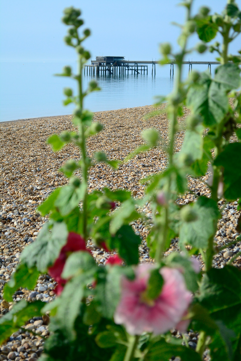 Deal pier photographed by Deal Holiday Lets
