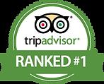 TripAdvisor-Logo1.png