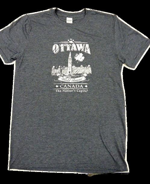 6400-Ottawa City Distressed