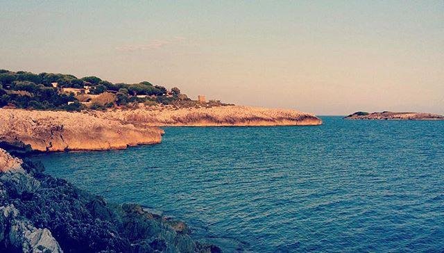 Mari blu ! #sea #italy #marinadicamerota #summer2015