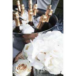 Let's celebrate!_Life, love and Amalfi Coast ❤__#weddingdress #wedding #weddingwire #weddingdetails