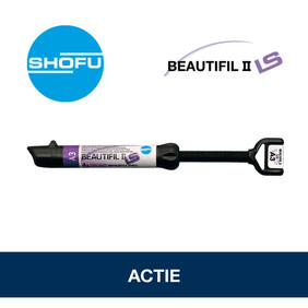 Shofu Beautifil II LS