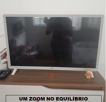 MANUELLA MARTINS GUIMARÃES-2ªC.png