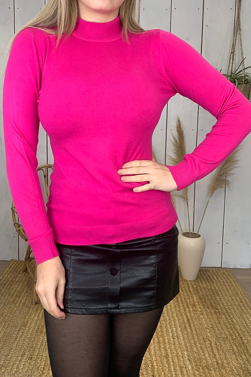 Basic Soft Touch Turtle Neck